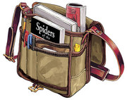 Field Satchel