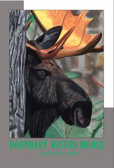 Boundary Waters Moose Poster