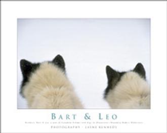Bart & Leo Poster