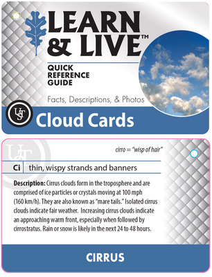 Live & Learn- Cloud Cards