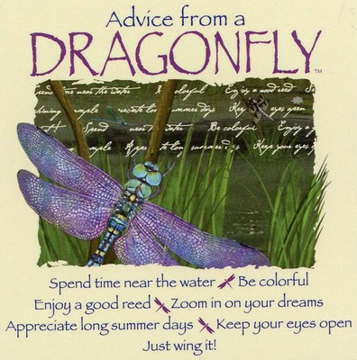 Advice From A Dragonfly Magnet