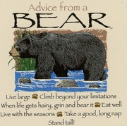 Advice from a Bear MAGNET