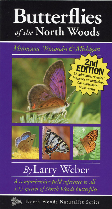 Butterflies Of The North Woods North Woods Naturalist Guides