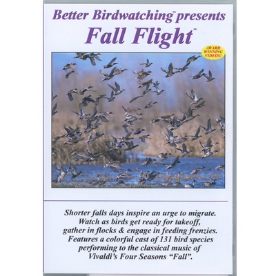 Fall Flight Dvd