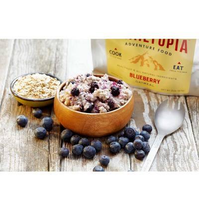 Trailtopia Blueberry Oatmeal