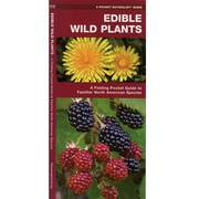 Edible Wild Plant Folding Guide