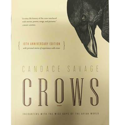 Crows : Encounters With The Wise Guys Of The Avian World
