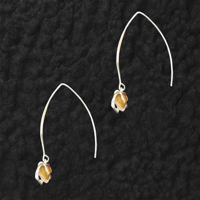 Lake Superior Agate Dangle Earrings