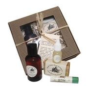 Sweet Fern Northwoods Gift Set