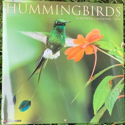 Hummingbirds Wall 2020