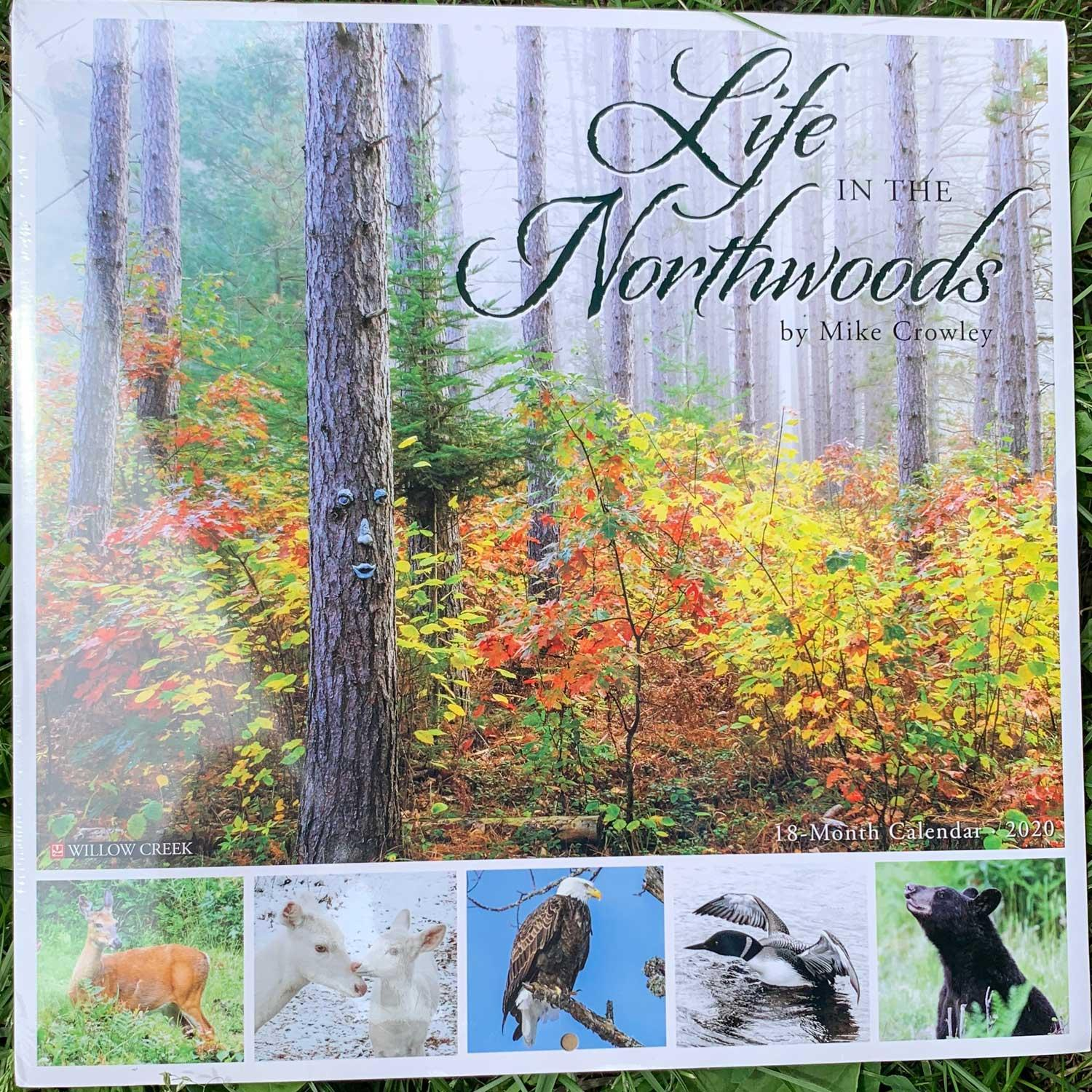 Life In The Northwoods Wall 2020 By Willow Creek Press   Boundary Waters  Catalog