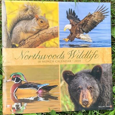 Northwoods Wildlife Wall 2020 Calendar
