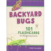 Backyard Bugs Flashcards