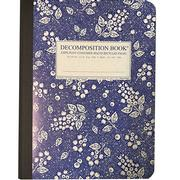 Decomposition Notebook Blueberry