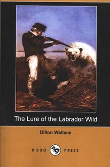 Lure Of The Labrador Wild