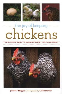 Joy Of Keeping Chickens