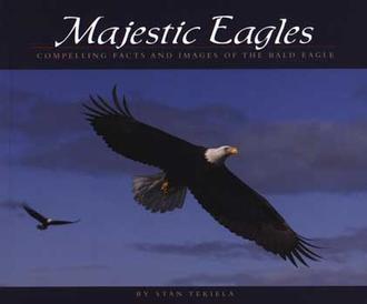 Majestic Eagles