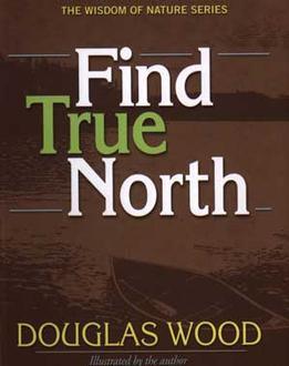 Find True North